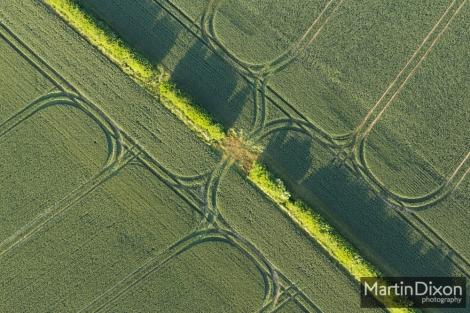 Field symmetry